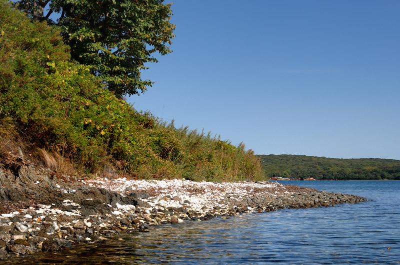 Остров Папенберга привлек белыми, покрытыми слоем устричных раковин берегами.