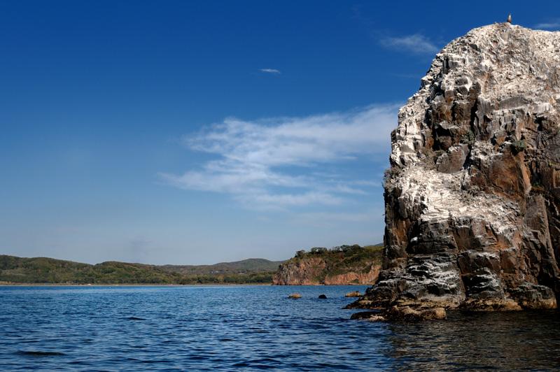 Скоро стану как окрестные скалы — столь же привычным и покрытым пометом элементом пейзажа.