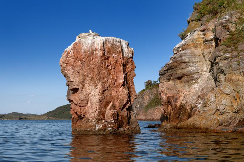 Вода еще достаточно теплая, чтобы из одежды ограничиться гидромайкой и неопреновыми трусами. Хорошо, что в последний момент вернулся и снял с себя гидрокостюм. Но все же поразили подводные охотники, несколько часов непрерывно бултыхающиеся в октябрьской воде. Лишь торчащие цветные трубки и сосредоточенное пыхтение, далеко разносящееся над поверхностью моря, выдают скромных тружеников гарпуна.