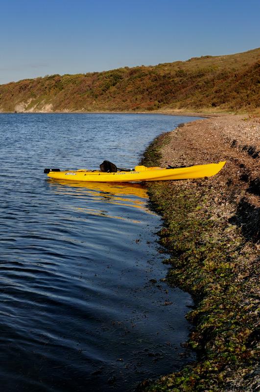Неосторожно высадился на берег, покрытый толстым слоем водорослей, тушка по самое нехочу провалилась в мягкий зеленый ковер. Не в меру разросшейся морской капусте не хватает естественных врагов —  морских козлов. На этой, с позволения сказать, экологической ноте, я и завершу сие краткое повествование.