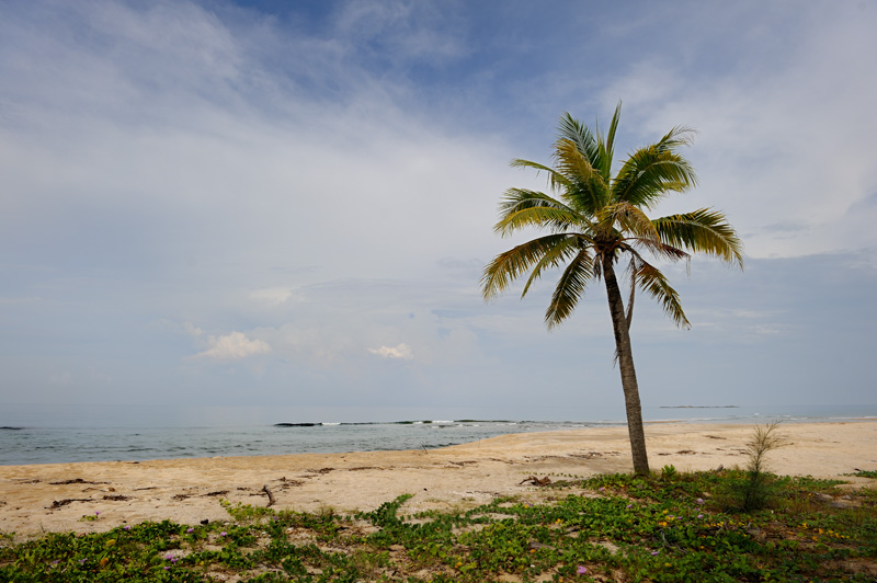 Пустынность песчаных пляжей вполне объяснима наличием водной преграды между пляжами и материком.