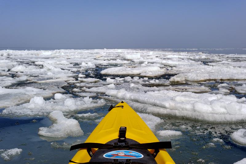 Лед расположился в заливе узкими кольцами, практически без проходов. Ледокол из каяка получается фиговый, приходится долго искать извилистый путь во льдах.