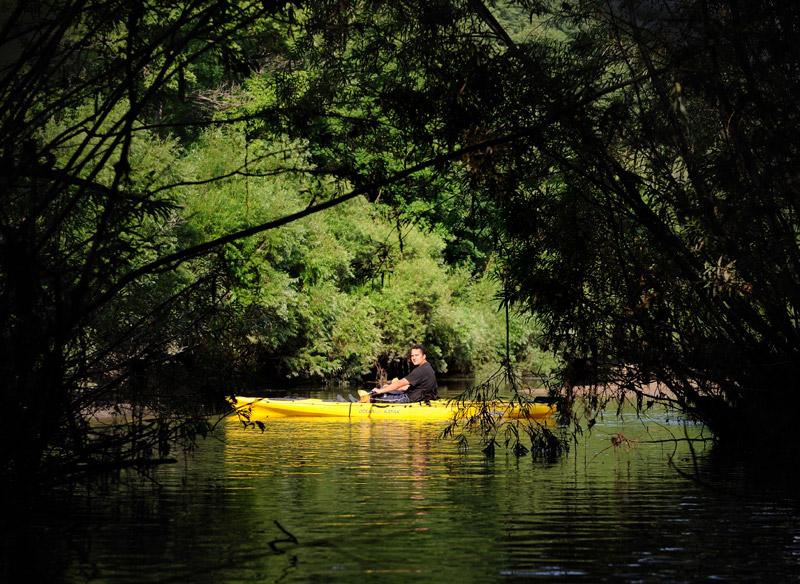 Неприметная протока выводит в затерянный мир, лишенный лодок, дорог и людей. Годная для тайных темных делишек местность, населенная лишь рыбами и жабами.