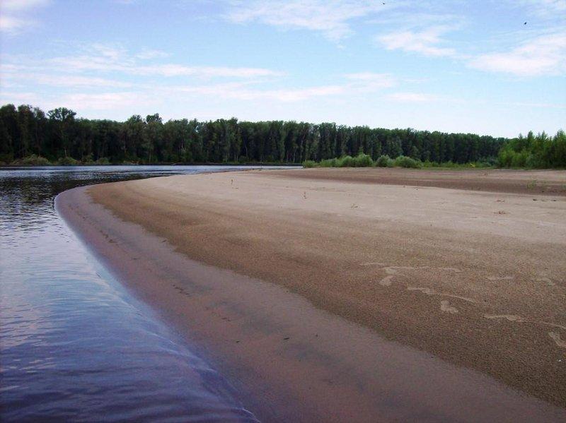 Вот такие берега нас радовали раньше на Оби.