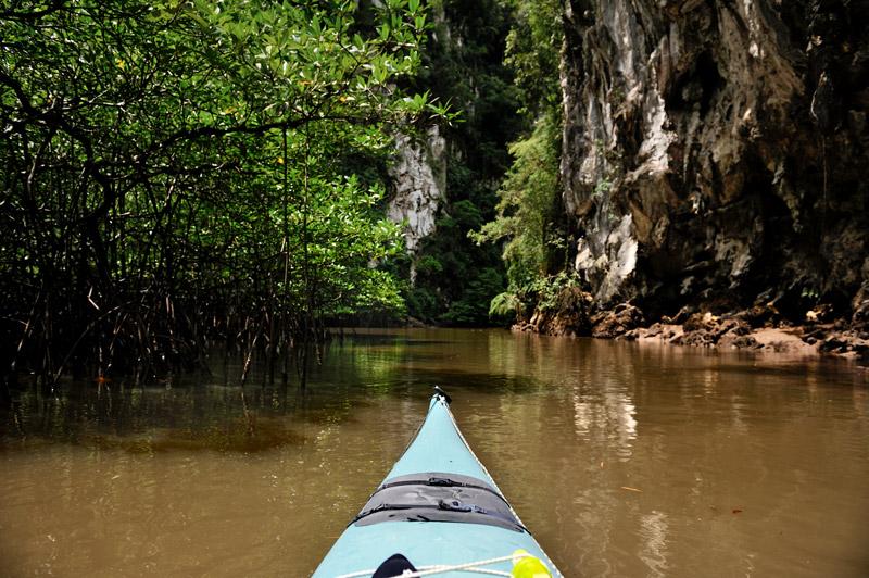В гротах сидят вараны, на ветвях вдоль отвесных склонов пасутся мелкие злобные обезьяны. Неспешная мангровая жизнь идет своим чередом.
