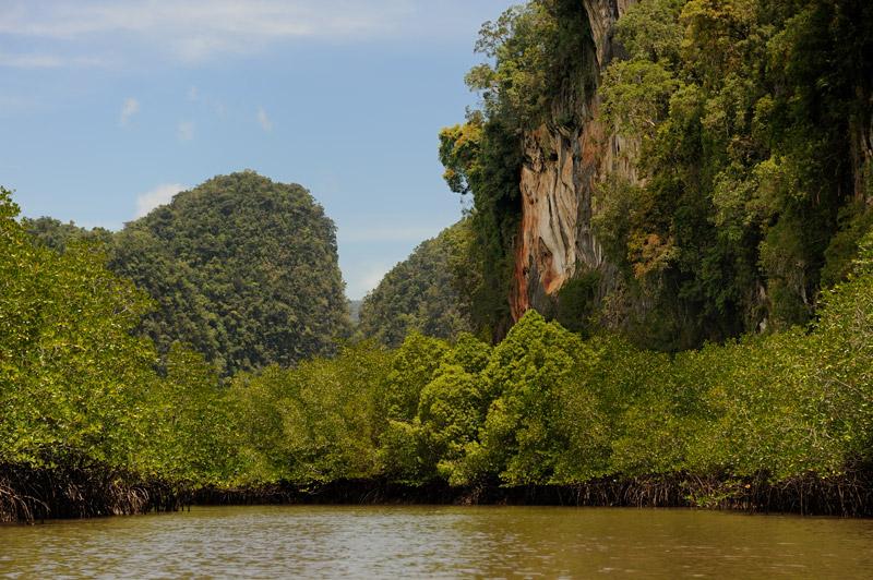Карстовый лабиринт в сочетании с лабиринтом мангровых болот — достойное место для прогулок.