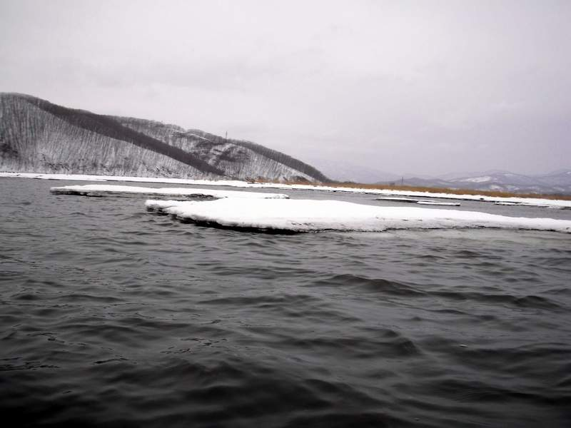 Последние льдины, застрявшие на мели у берега...