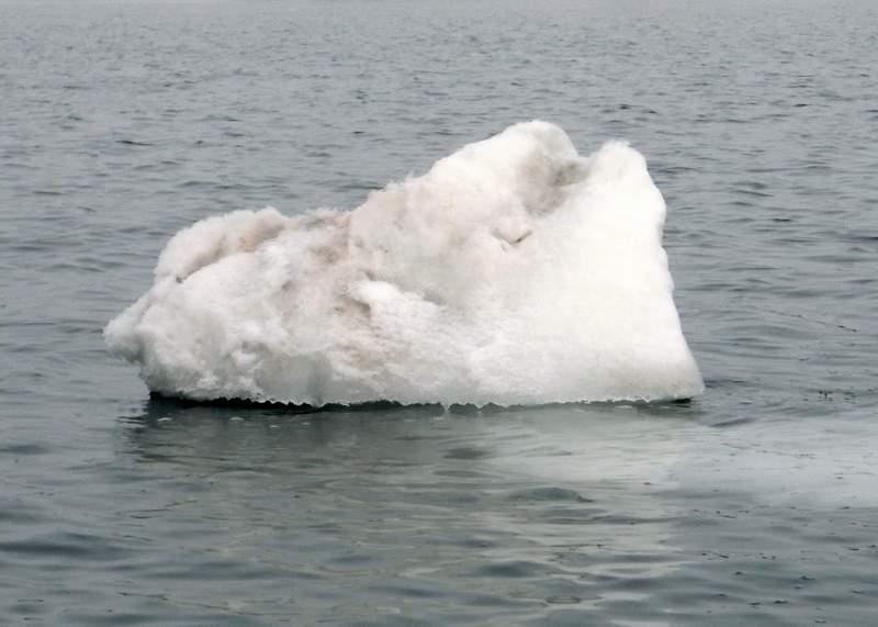 Последние айсберги...