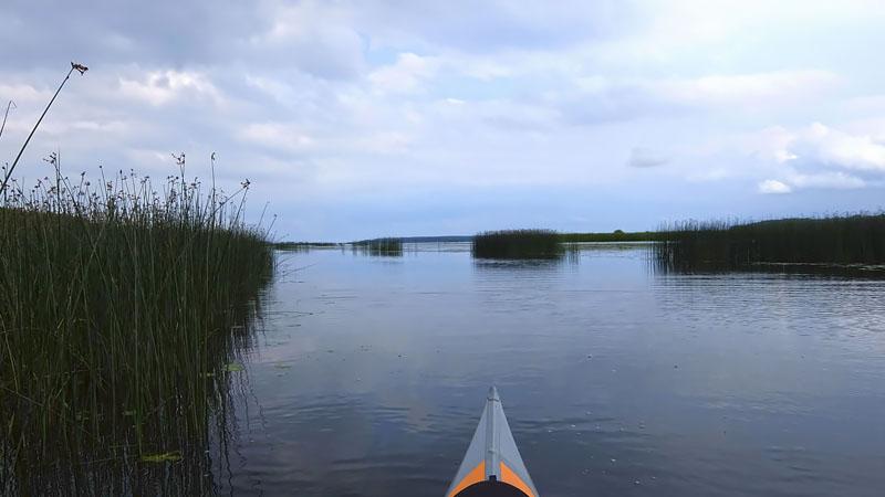 А вот и устье Вопши. Возвращаемся на просторы Костромского водохранилища.
