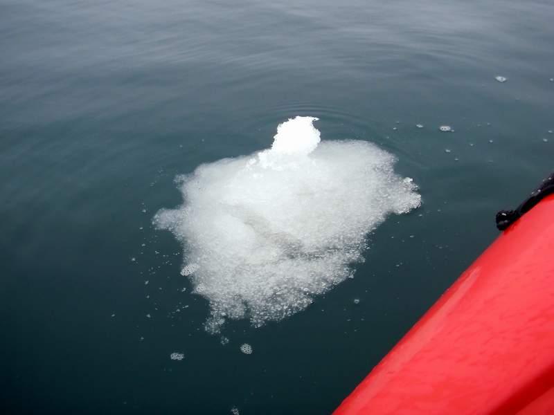 И айсбергенята...