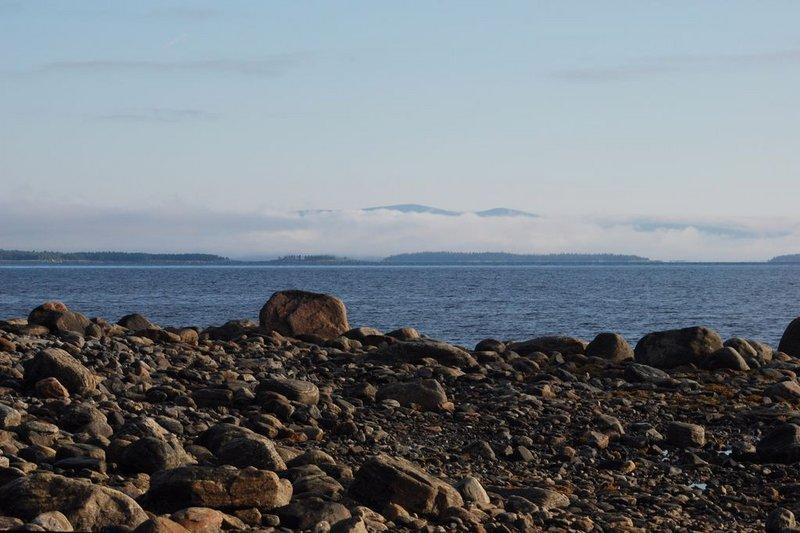 При семикратном приближении хорошо виден камень, до которого я вчера не дошёл. Странная шапочка чем-то напоминает моторную лодку. Другие ассоциации в голову не приходят. Бред какой-то…