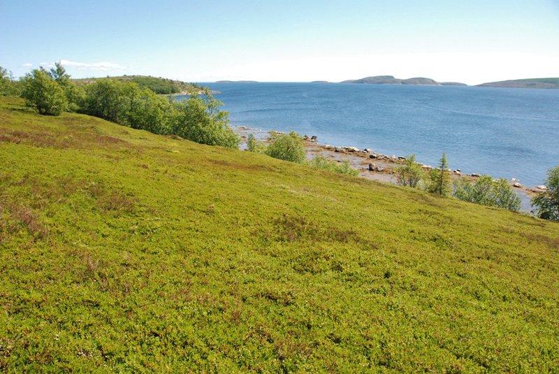 С вершины видно много островов.
