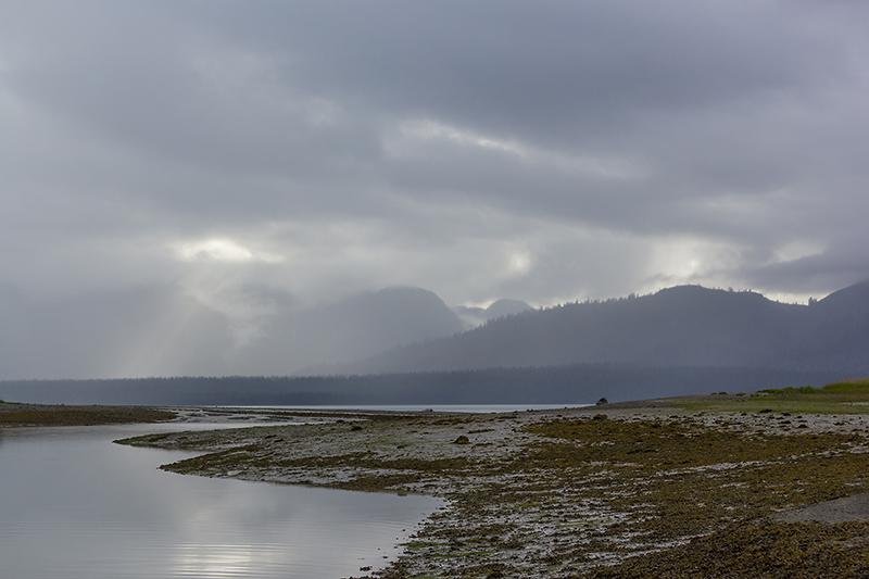 9 Августа. Дождь перешел в морось и мелкий дождь. После недели караула ощущение такое, что дождя вообще нет. Зато есть ветер. До точки выброса 15 км. День получается есть в запасе, но дергаться вправо-влево чревато невыходом в срок. Прошли 10 км и встали на острове. Острова все время придавали нам чувство спокойствия, тут меньше шансов встретить медведа. Но в этот день произошел разрыв всех шаблонов. Напротив острова из кустов вышел медведик, немного помедлил, как если бы вы морально ежились в предвкушении холодной воды, подтягивая плавки, покосил глазом, вычисляя поправку на ветер, и поплыл. Хорошо, что не к нам, а на ближайший берег в 2-х километрах по прямой. Ихтиандр хренов. Да, и наш безопасный остров через 5 часов все равно превратился в полуостров - отлив сэр. От путешествия осталось 5 км, завтра при всех самых хреновых раскладах дойдем за 5-6 часов.   Пройдено 10 км.