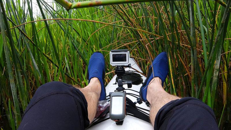 Заросший берег по пути следования не всегда даёт возможность высадиться и размяться, поэтому, забурившись в прибрежные заросли, даю таким вот образом ногам немного передохнуть.