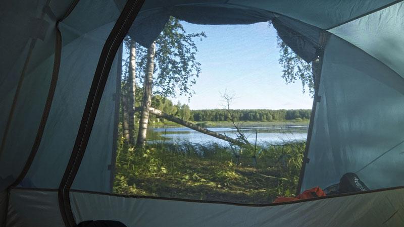 Вид на всё ту же поваленную березу уже из палатки.