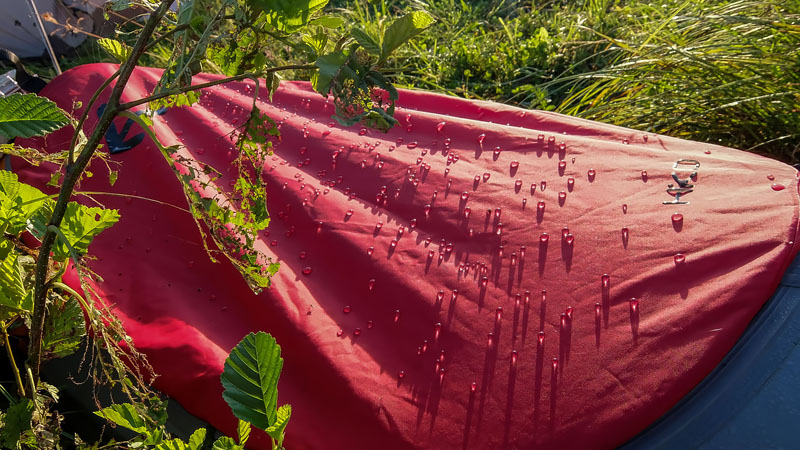 Так выглядят настоящие драгоценности каякера, – это утренняя роса.