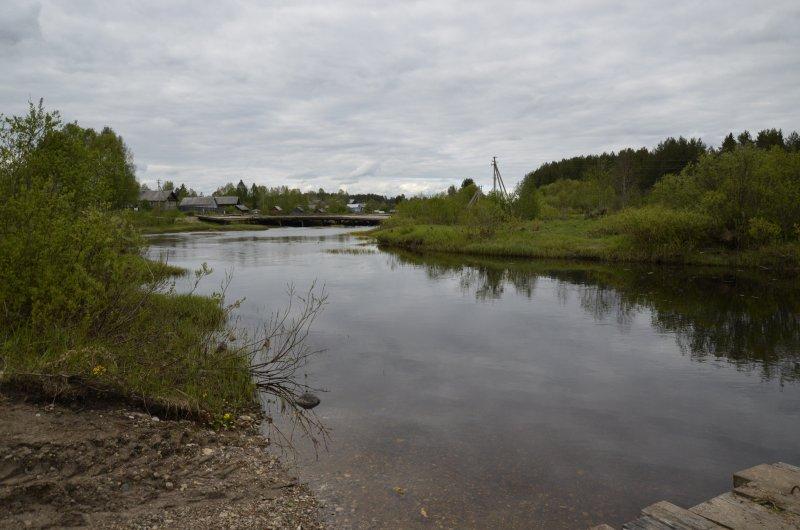 Река в районе станции Явенга шириной метров 20, глубиной менее метра.