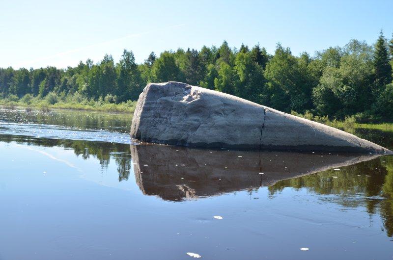 В восьми километрах ниже Тотьмы у правого берега расположен камень Лось. Высокая вода отчасти скрывает его истинные размеры - 8х4м. Впечатляюсь, и с нарастающим течением бодро гребу дальше.