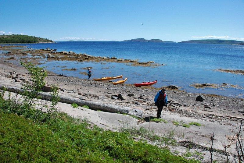 И сразу лезем на вершину острова по изумительному душистому зелёному ковру.
