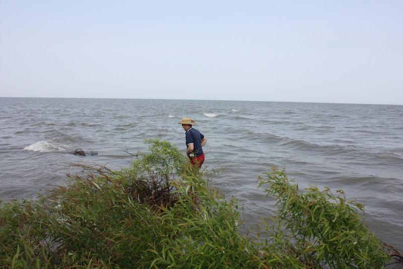 Ничего не осталось и от  косы. В этом месте она выдавалась в озеро метров на пятьдесят. А  теперь только барашки волн показывают , где она была.