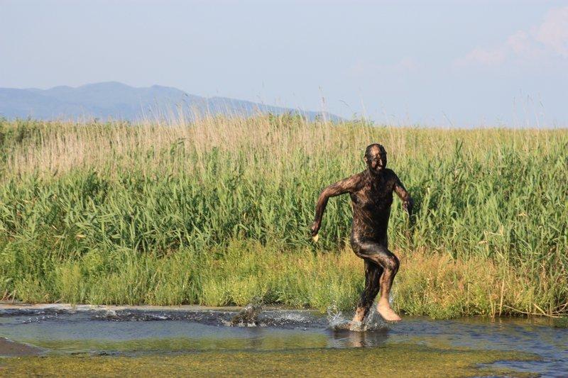 Под вечер из болот стали выскакивать и носиться, как угорелые, местные мелкие бесы, порождаемые жирной хасанской грязью.