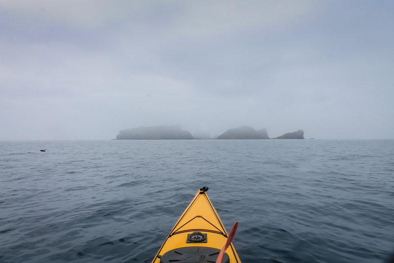Там нас уже встречали стайки шустрых тюленей ларг истоптавших узкую каменистую косу.