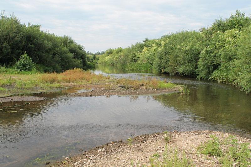Неспешно догребли до села, по пути встретили приток речушки Снова, по правому берегу, остановились размяться, сделать несколько упражнений.