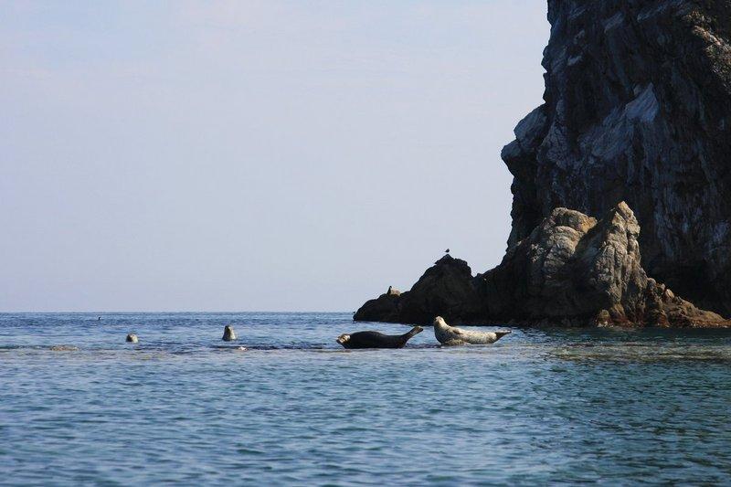 Поход на морских каякахСлавянка-Андреевка (Южное Приморье). Сентябрь 2008