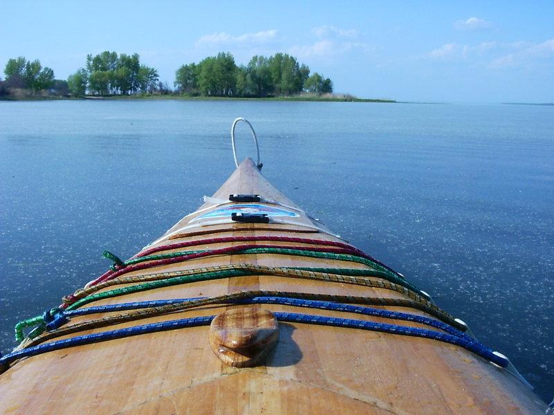 в воде тонким слоем лежит тополиный пух, пока не отплыл метров на 200 он не прекращался,