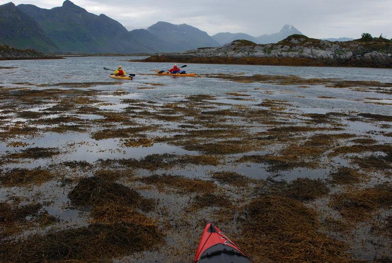 Предлагаю выйти из лабиринта островов и шпарить напрямик по открытой воде. Отклоняется. Начинаем петлять среди островов. Местами мелковато.