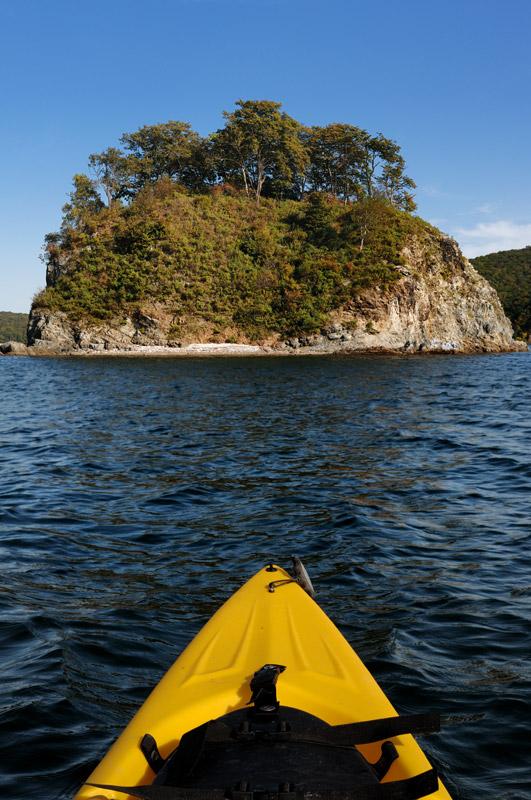 Остров внутри острова — Папенберга находится в бухте Новик, в свою очередь, находящейся внутри острова Русский.
