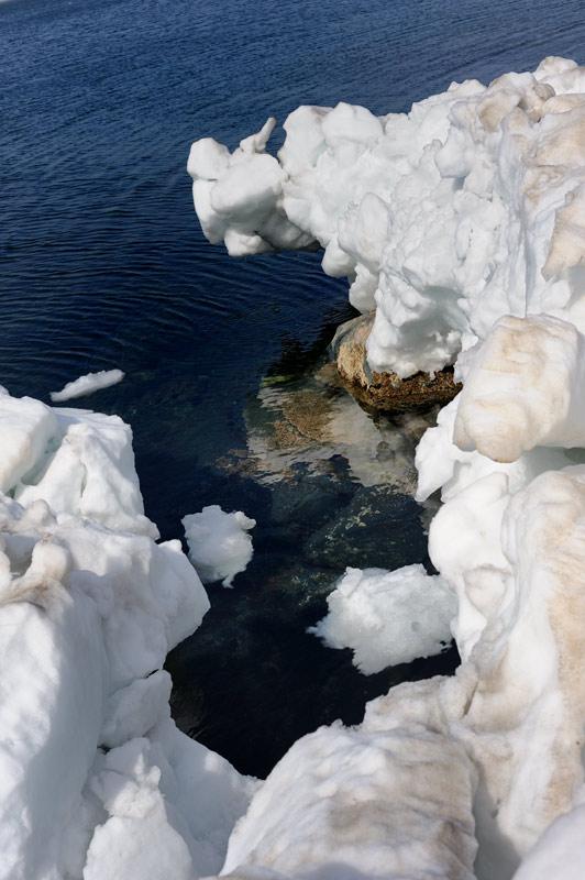 Вода стремительно теряет прозрачность и торжественную мрачность, столь характерную для начала сезона. Скоро можно будет купаться не опасаясь что-нибудь отморозить.