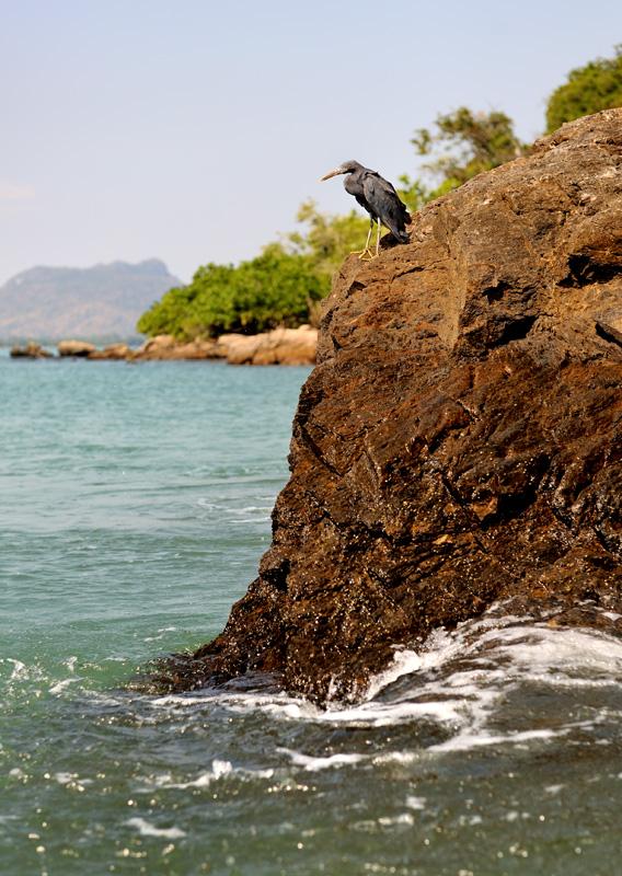 У оконечности мыса бурлящая вода образует пенный водоворот, всасываясь в подводную пещеру в основании острова.