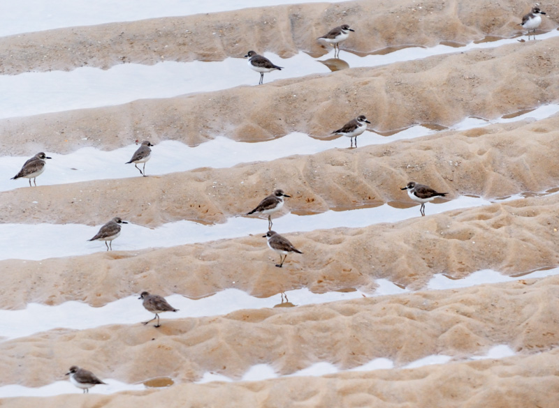 От моря лагуны отделены обширным песчаным валом, лишенным какого-либо внимания как со стороны туристов, так и местных жителей. На километры тянутся пустые песчаные пляжи.