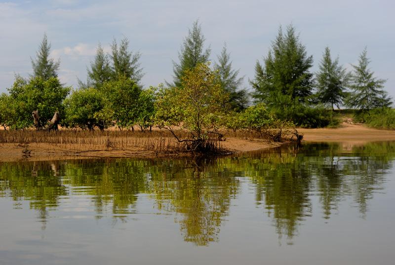Вдоль западного побережья Пханг Нга тянутся длинные узкие лагуны естественного происхождения, постепенно переходящие в разветвленную сеть проток и каналов.