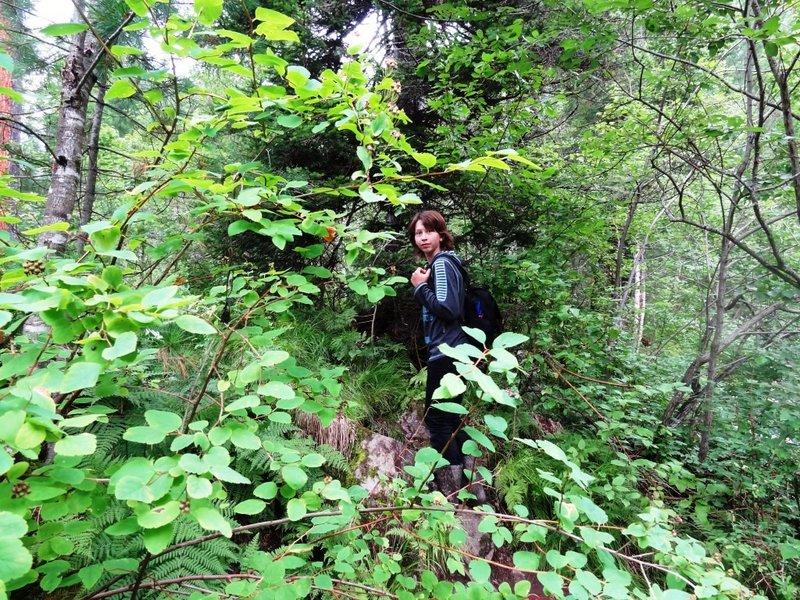 Утром экскурсия к небольшому водопаду.