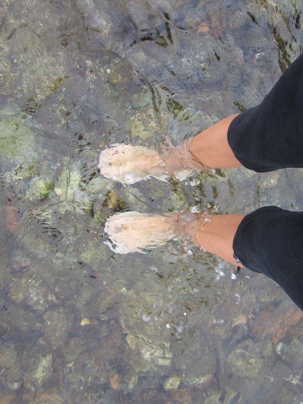 Чистое и прохладное море