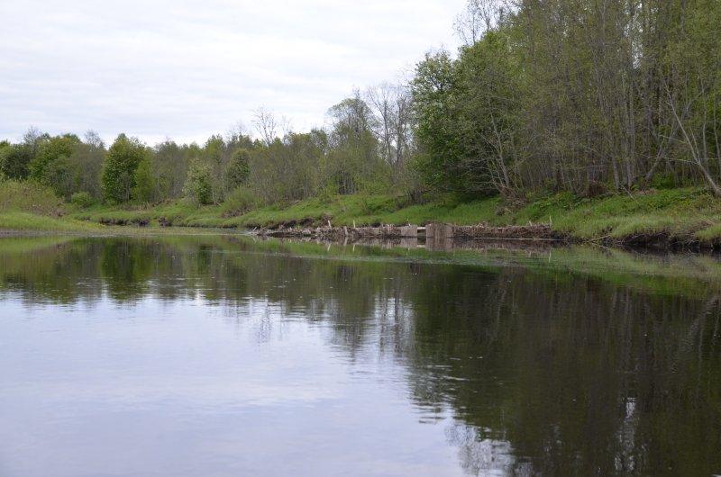 В русле встречаются старые рыболовные заграждения.