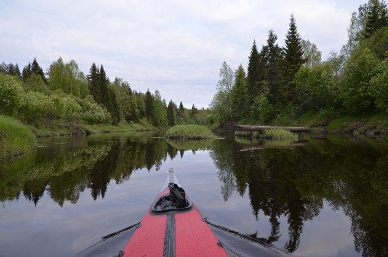 В советские годы по реке сплавляли лес, топляки встречаются в изобилии. Сопровождают меня всю дорогу, указывая заодно скорость течения. Большинство ориентированы вниз по течению, опасности не представляют.