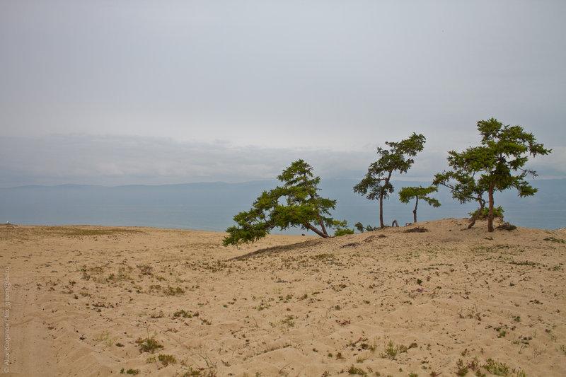 Песок Сарайского залива.