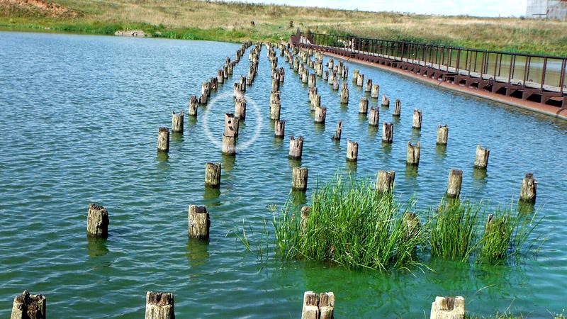 Такой вот мост в районе поселка Шунга (почти середина маршрута). Под ним мы проплыть не решились. Рядом торчат остатки свай прежнего моста. На одной из опор, обращаю ваше внимание, не что иное, как скворечник.