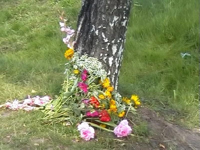 Не доезжая Бийска, есть место, где многие останавливаются, там под березкой всегда цветы.     ,