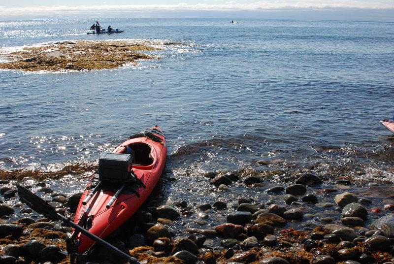 Проходя мимокакого-то островка встречаем стаю (или косяк?) медуз. Во времяобхода Порьей губы из моря до нас докатывала длинная и пологая волна. Она длянас попутно боковая. При этом ветер дул с берега и он на эту волну наложил встречнуюмелкую волну. Эта игра волн скрашивает монотонную греблю. Погода стремительноулучшается, облака исчезли, ветер немного ослаб. Поверхность воды сталанапоминать постель с атласным бельём.