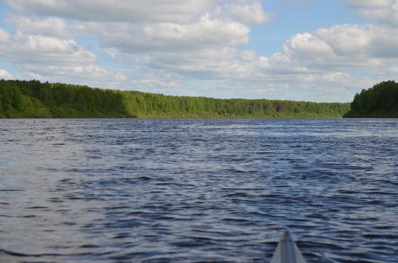 На первый взгляд кажется, что леса по берегам стоят сплошной стеной. Но проплывая мимо, видишь что за узкой полоской леса почти не всем протяжении реки просвечивают вырубки.