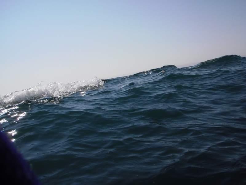 Попытался поймать фотогеничную волну, приходится одновременно следить, чтобы не кувыркнуться.