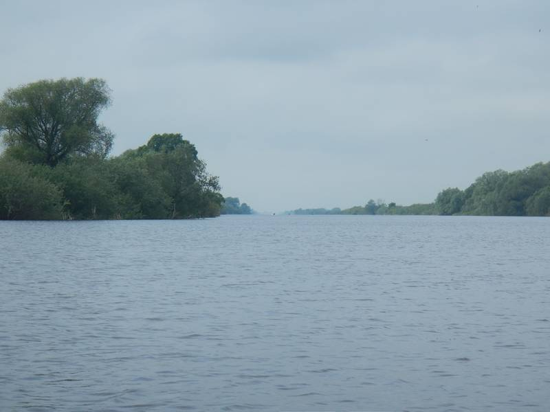 Я уже почти решил, что поеду в Новгород по Сиверсову каналу, как оказался перед ним. Второй раз за эту поездку - но уже с другой стороны.Остановившись у навигационного знака на стрелке канала и Мсты, где на берегу глубина была около 30см, я принялся обдумывать дальнейший маршрут.Ветер был северо-восточный, с уклоном к северу и в канале был бы боковым. Это означало 10км гребли. А потом, при выходе в Волхов у Городища, 3 км гребли против ветра.Если же ехать по Мсте или Копке, то ветер попутный. Но берега нет.