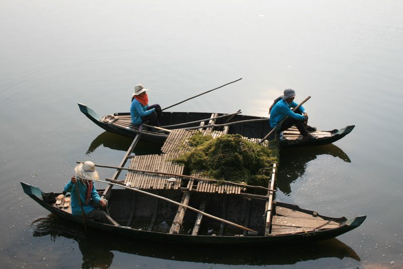 Камбоджа.Чистка канала у стен Анкор Вата