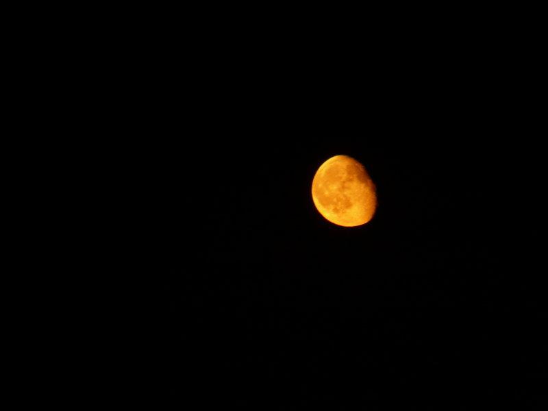 Такая вот луна нас приветствовала в первую ночь в Крыму