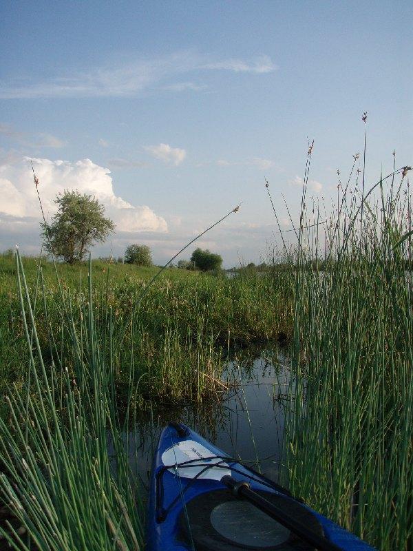 Пришлось тренироваться в другом направлении.   А здесь красиво :-) У народа ловится рыбка с ноготок